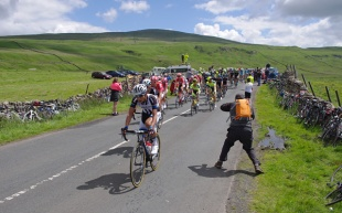 Tour_de_France_2014_-_the_peloton_-_geograph.org.uk_-_4058254