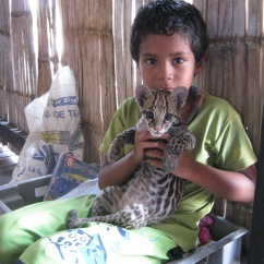 boy with cat photo