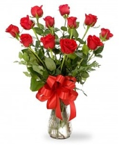 mother day rose3449497242_da27b33a6f